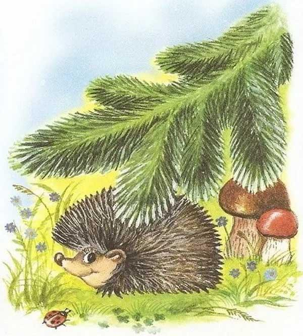 картинка ежика под елкой последнее время