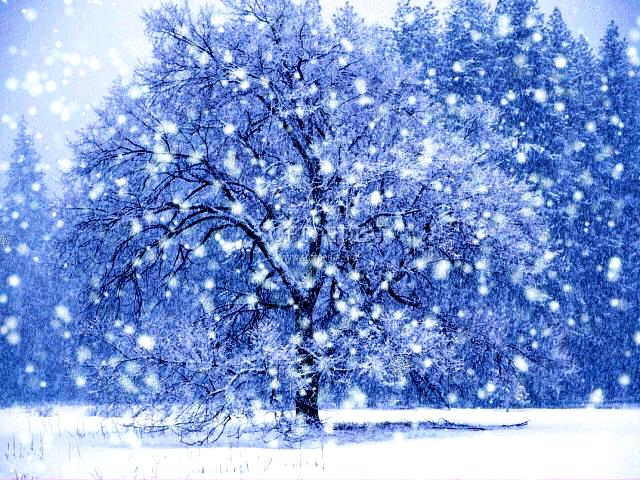 картинка зима анимация падает снег и остается на буквах двух