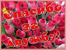 Моим любимым друзьям).