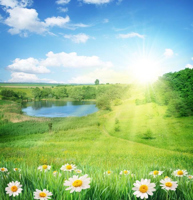 Дача, солнце, лес, вода...