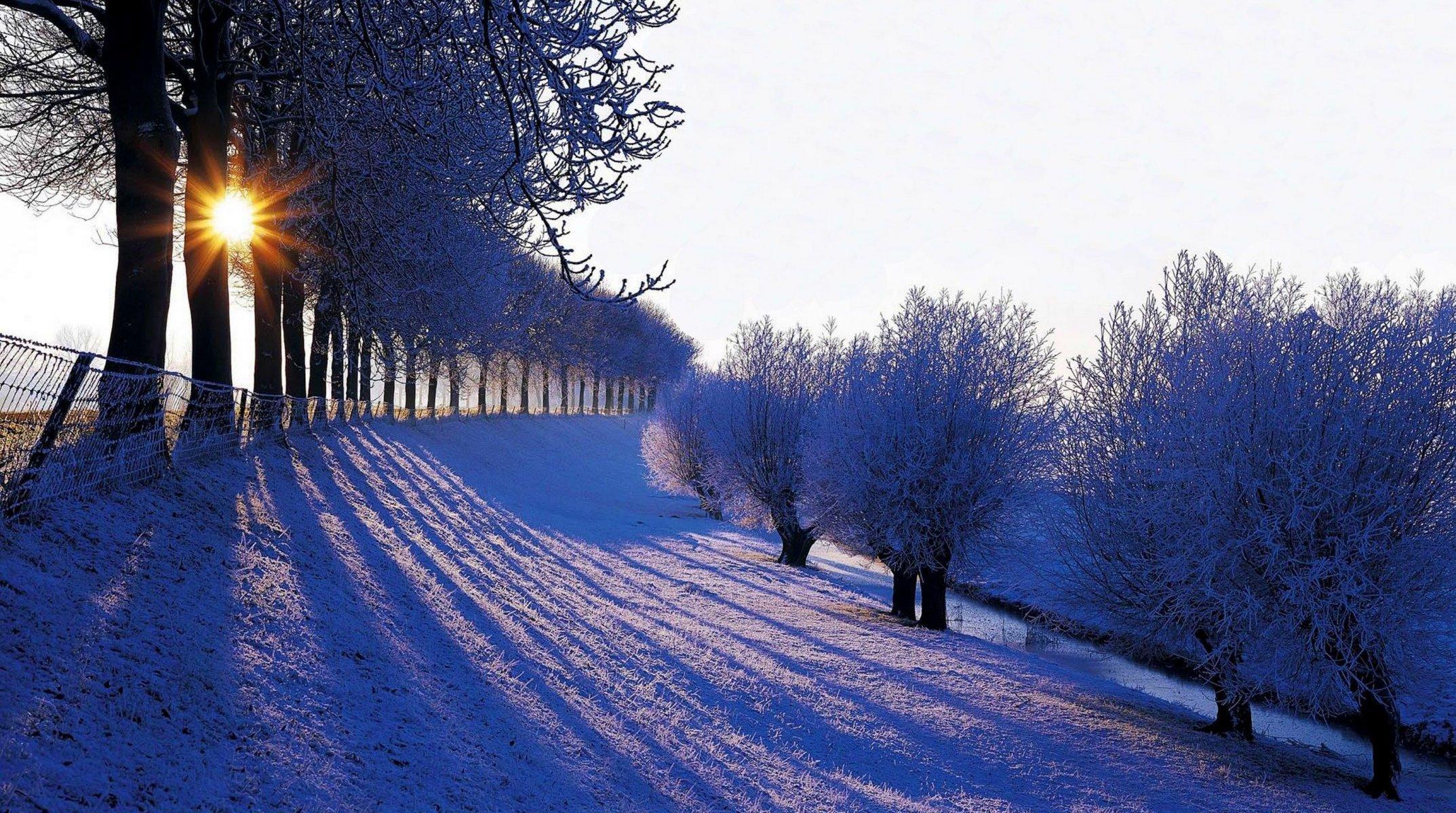 Я люблю вас до снега