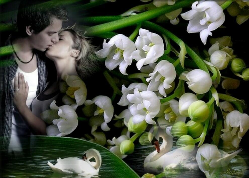Открытка о весне и любви, картинки прикольные поздравления