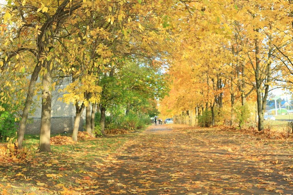 Осеннее.