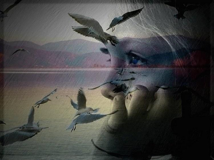 Она мечтает летать искала только его