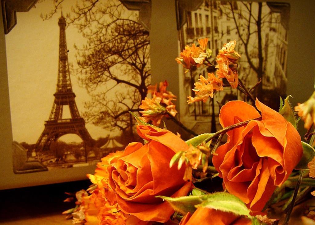 ..... Прогулка по Парижу .....