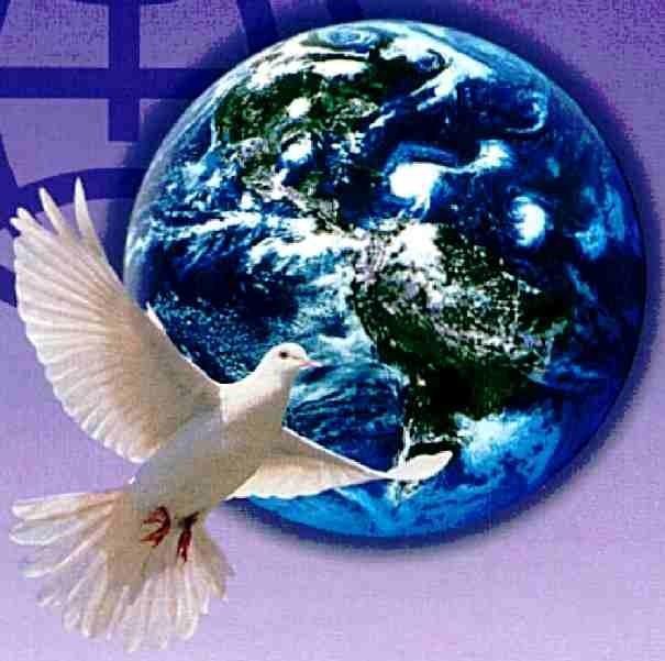 картинки с голубями на земле стиль выбирают эксцентричные