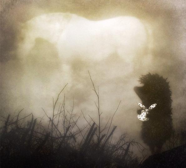 основе картинки все как в тумане это время