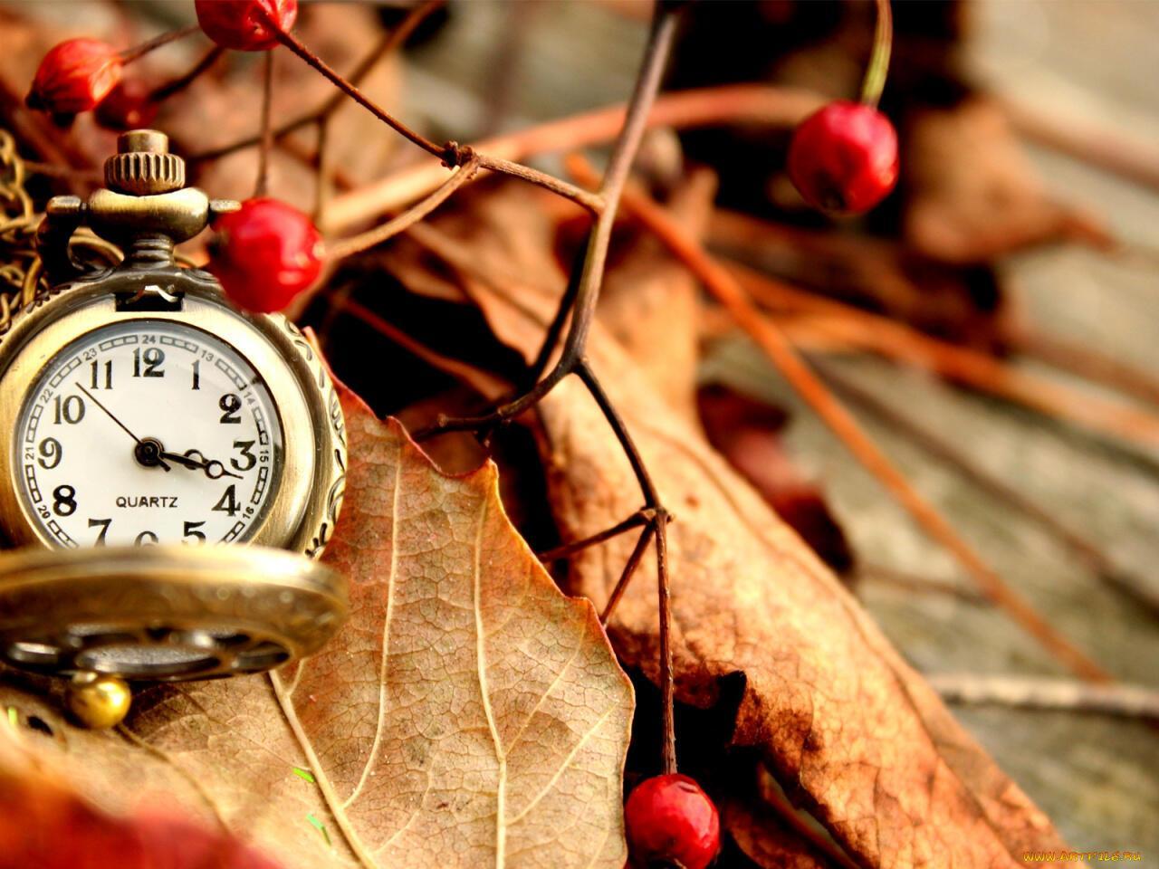 Открытки время любви
