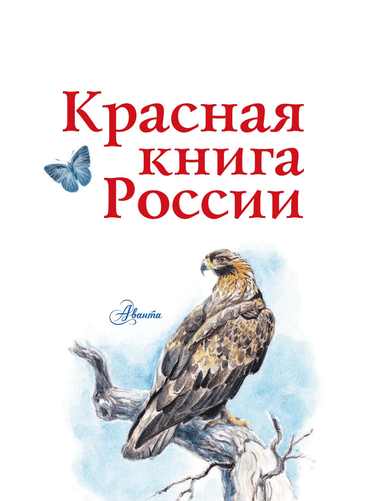 Добрым утром, прикольные картинки красной книги