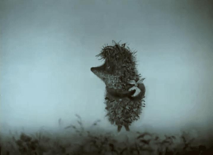 Прикольные картинки с надписями про ежика в тумане