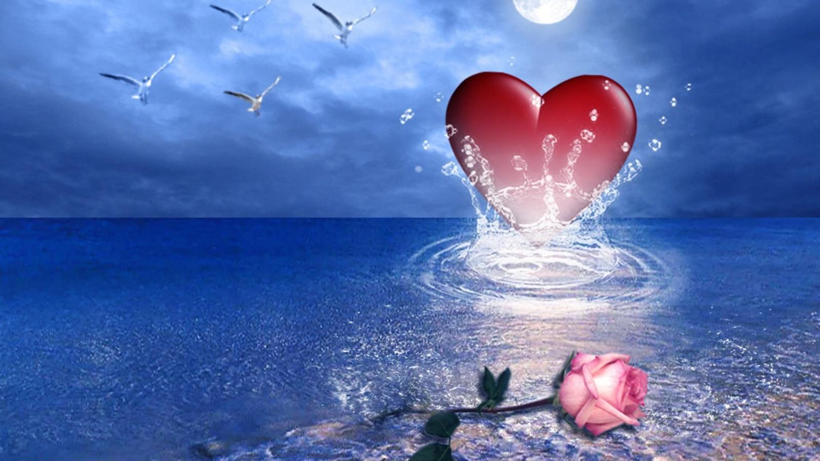 красивые картинки океан любви приглашают