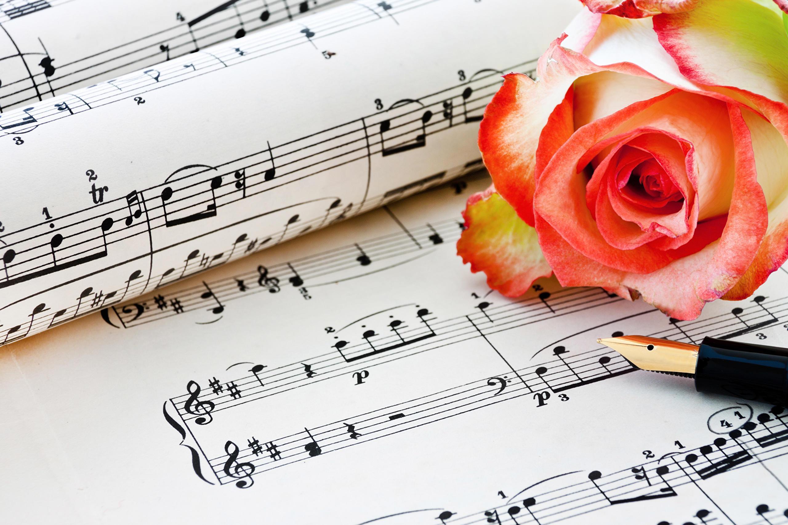 Открытки музыкальная тема, пойми открытка