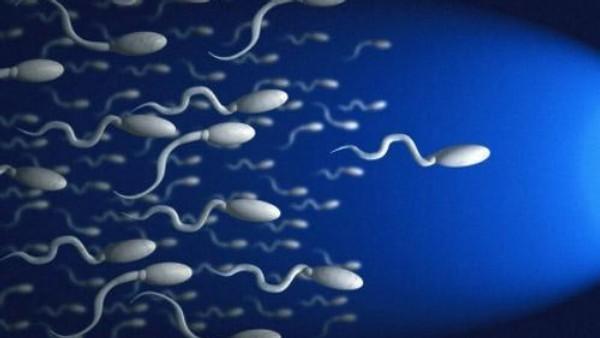 mogut-li-spermatozoidi-proniknut-cherez-trusi