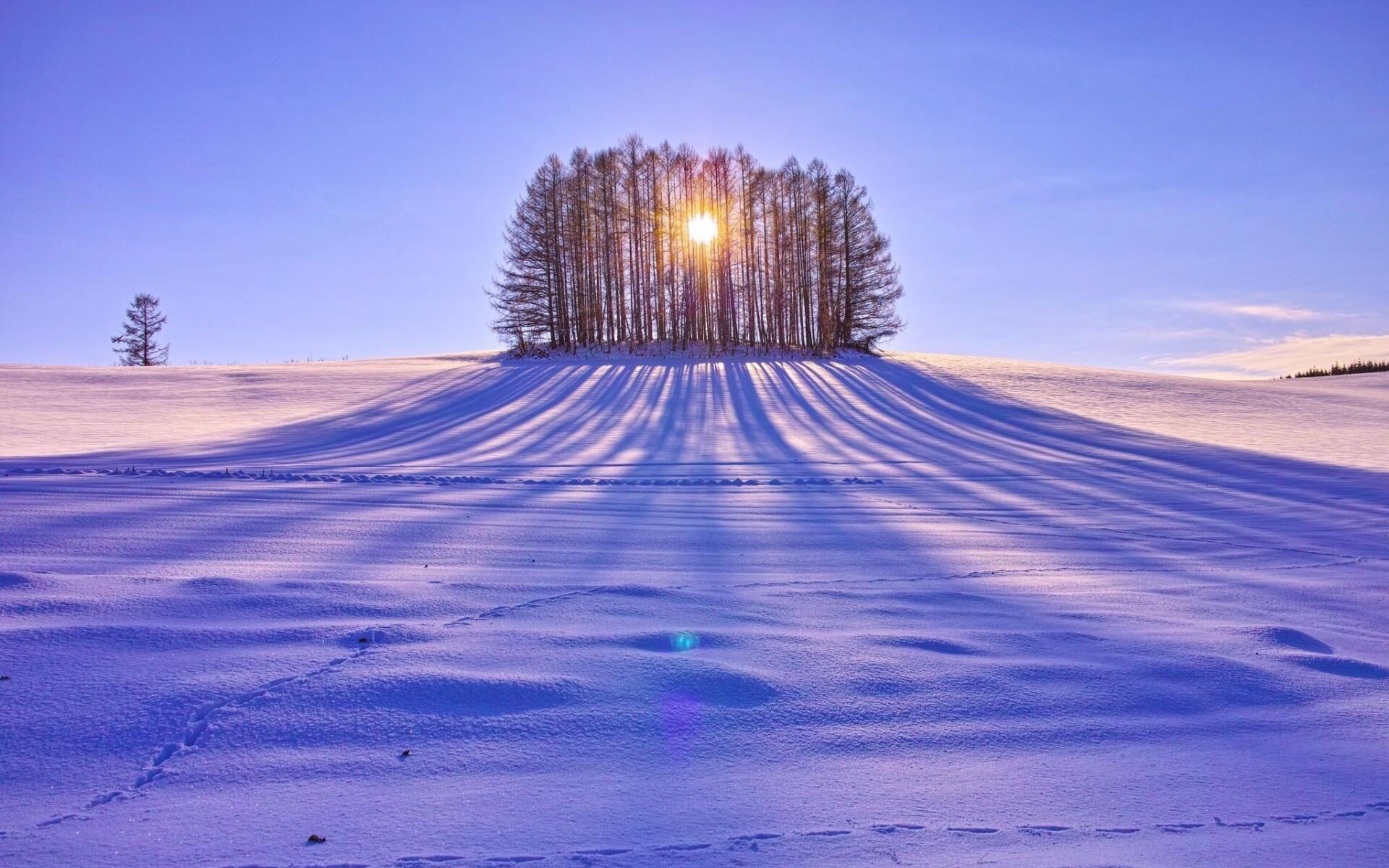 Про нашу зиму