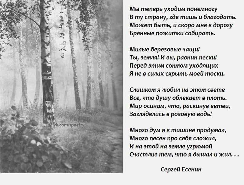 Есенин стих туман