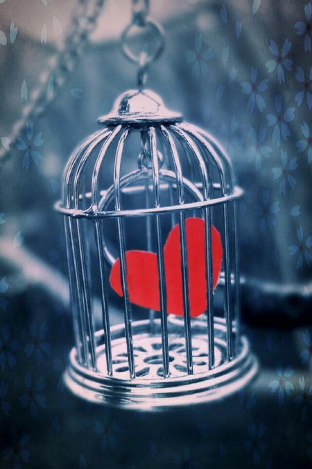 Сердце в клетке