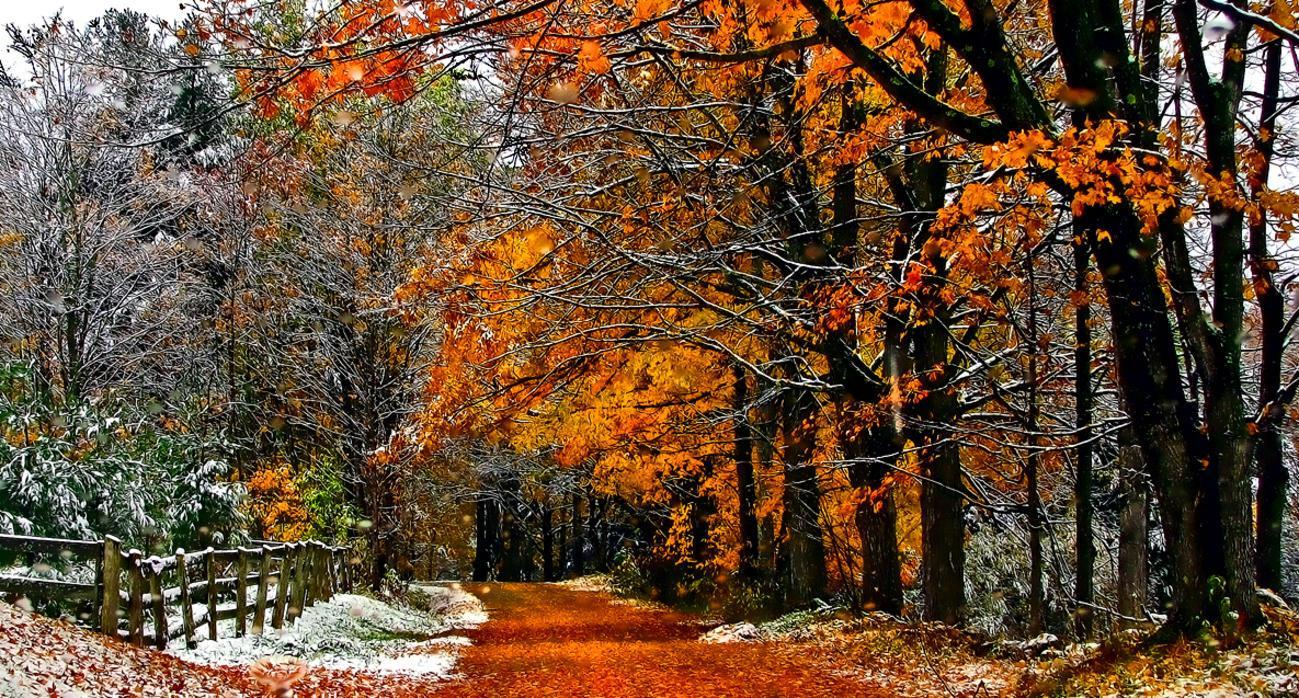 юмор картинки на тему конец осени холода