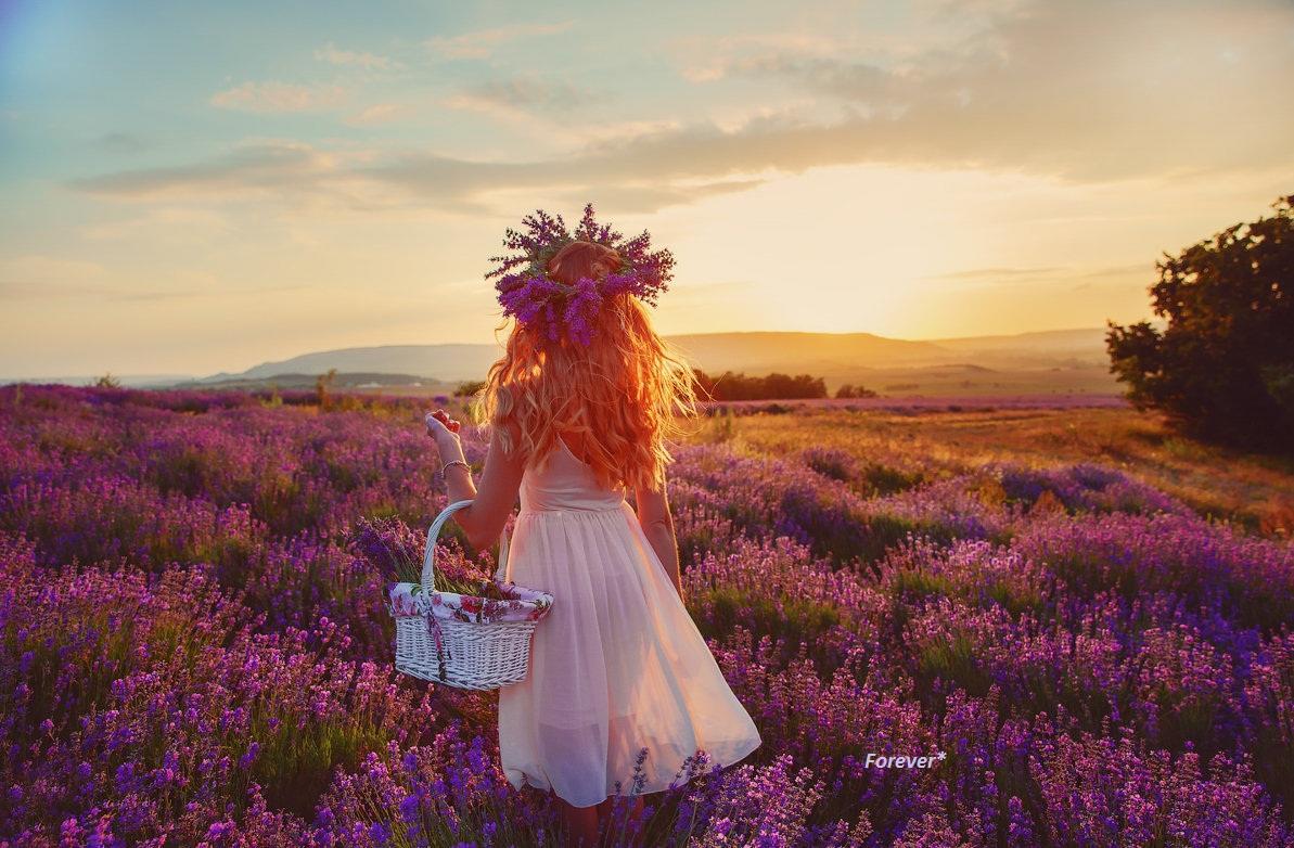 Пробежится ветерок меж соцветий