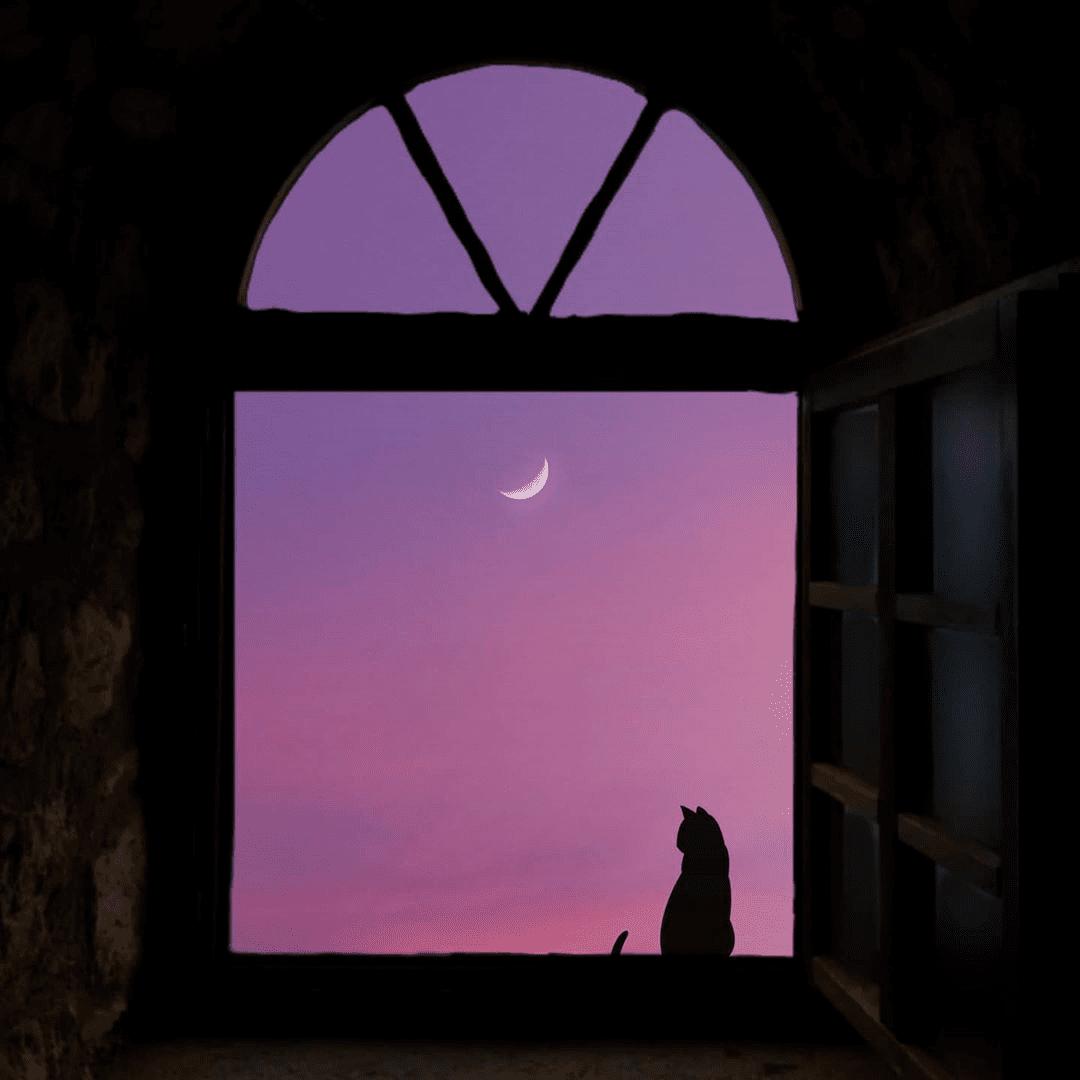 Длинный вечер