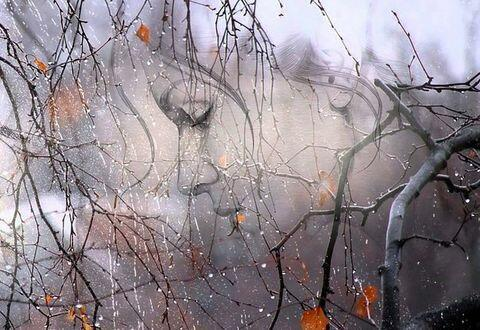 Осень. плачет скрипка Рябов Борис