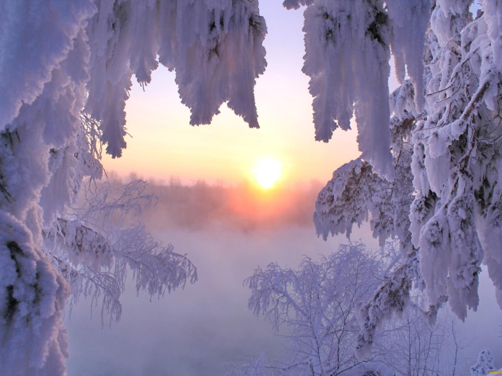Зимний пух из снежных мух