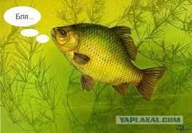 Сказ о Рыбаке и Рыбе