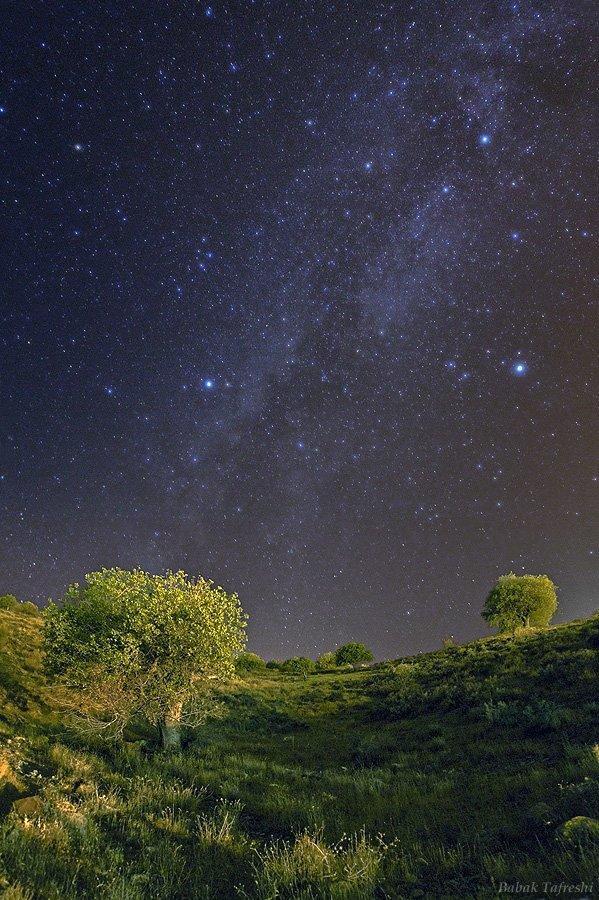 Звёздная летняя ночь