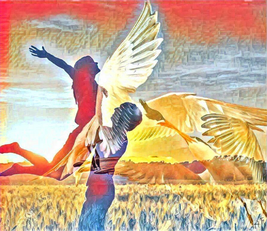 Два крыла