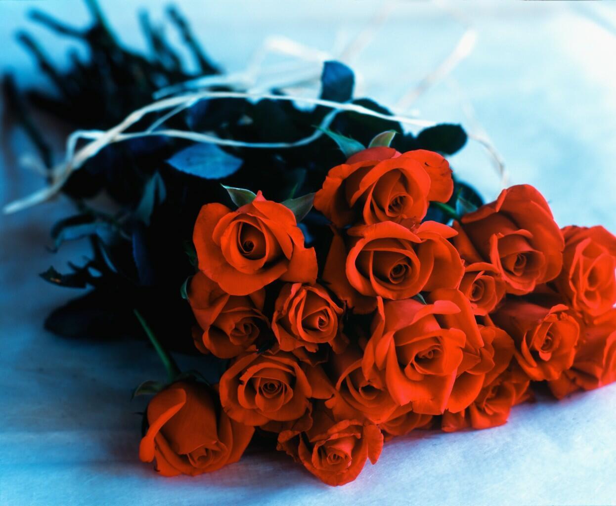 Передвижка, картинки с розами с днем рождения мама