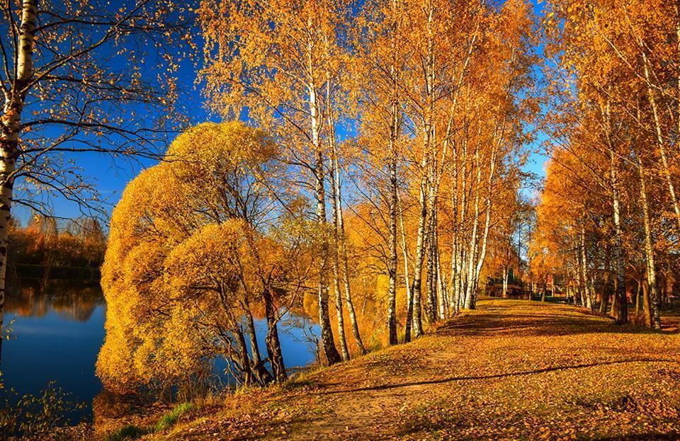 Вот и осень настала...