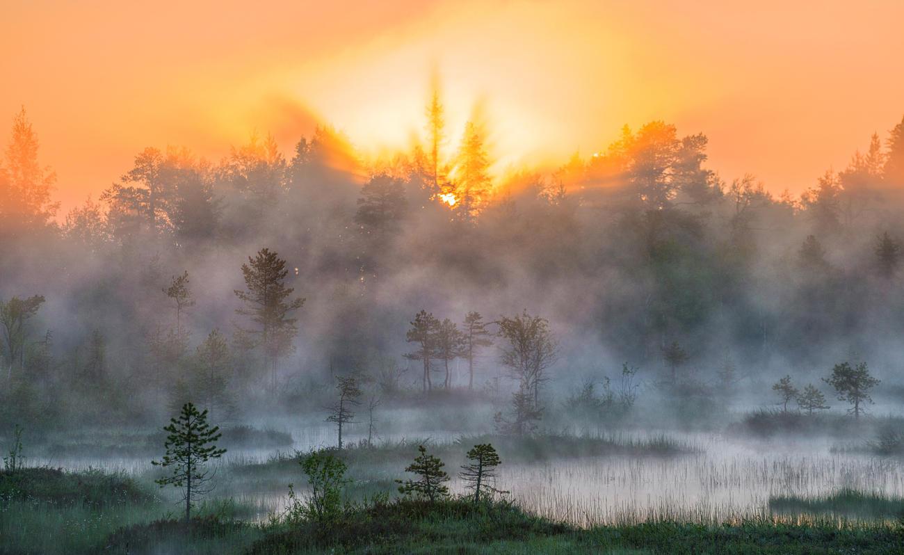 фото тумана в отличном качестве неполный перечень