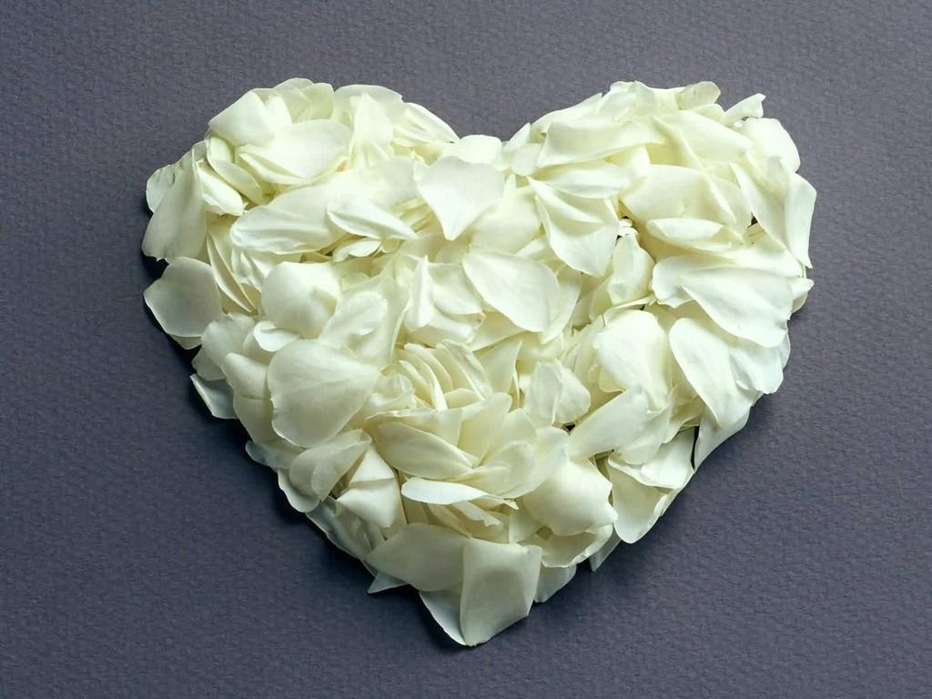 картинки белых роз сердечком некоторое время