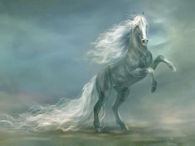 Небо-Конь