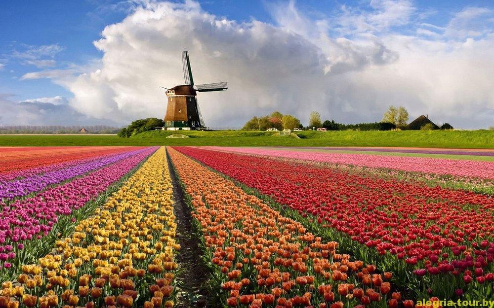 О Нидерландах. Часть вторая