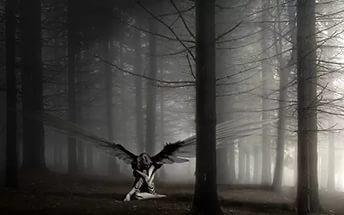 Мой Ангел за спиной расправил грозно крылья...