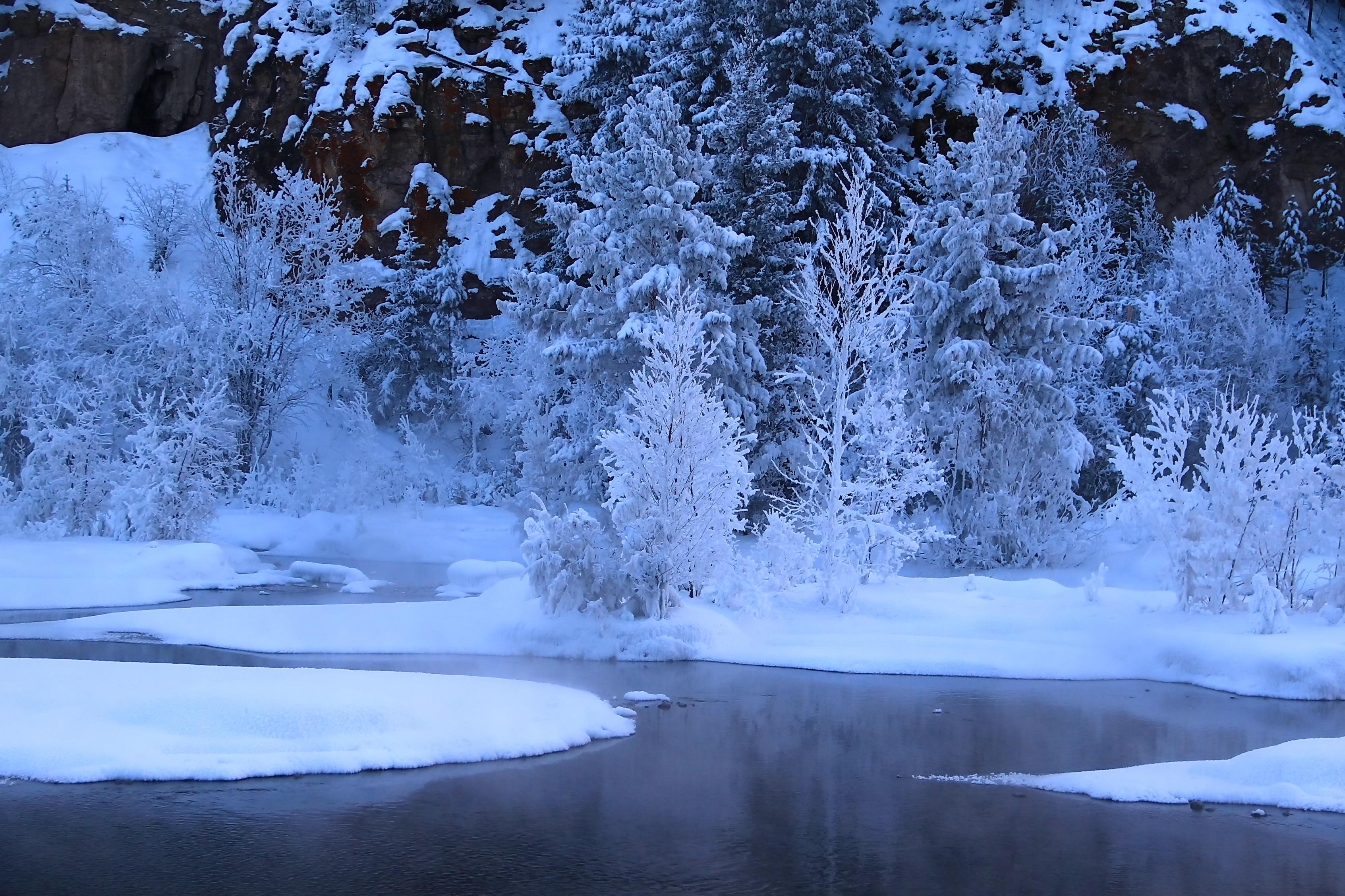 предложения гифки про зиму красивые артистка россии отмечает