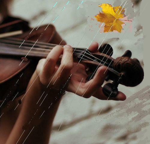 Раненой скрипкой