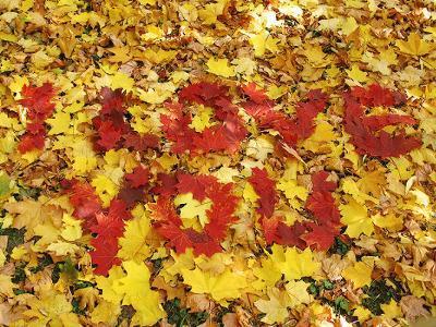 Осенних красок чувственная грусть. Любви последней трепетная нежность: Всё то, с чем я сегодня расстаюсь, Седых снегов приемля...