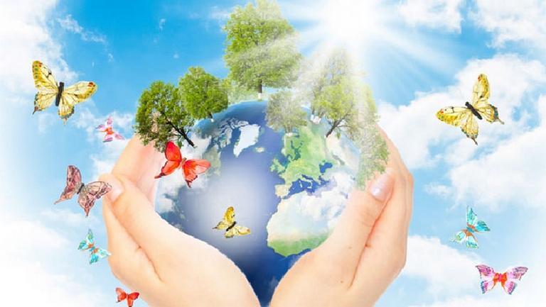 картинки по экологическому воспитанию в школе буфы, эти узнаваемые