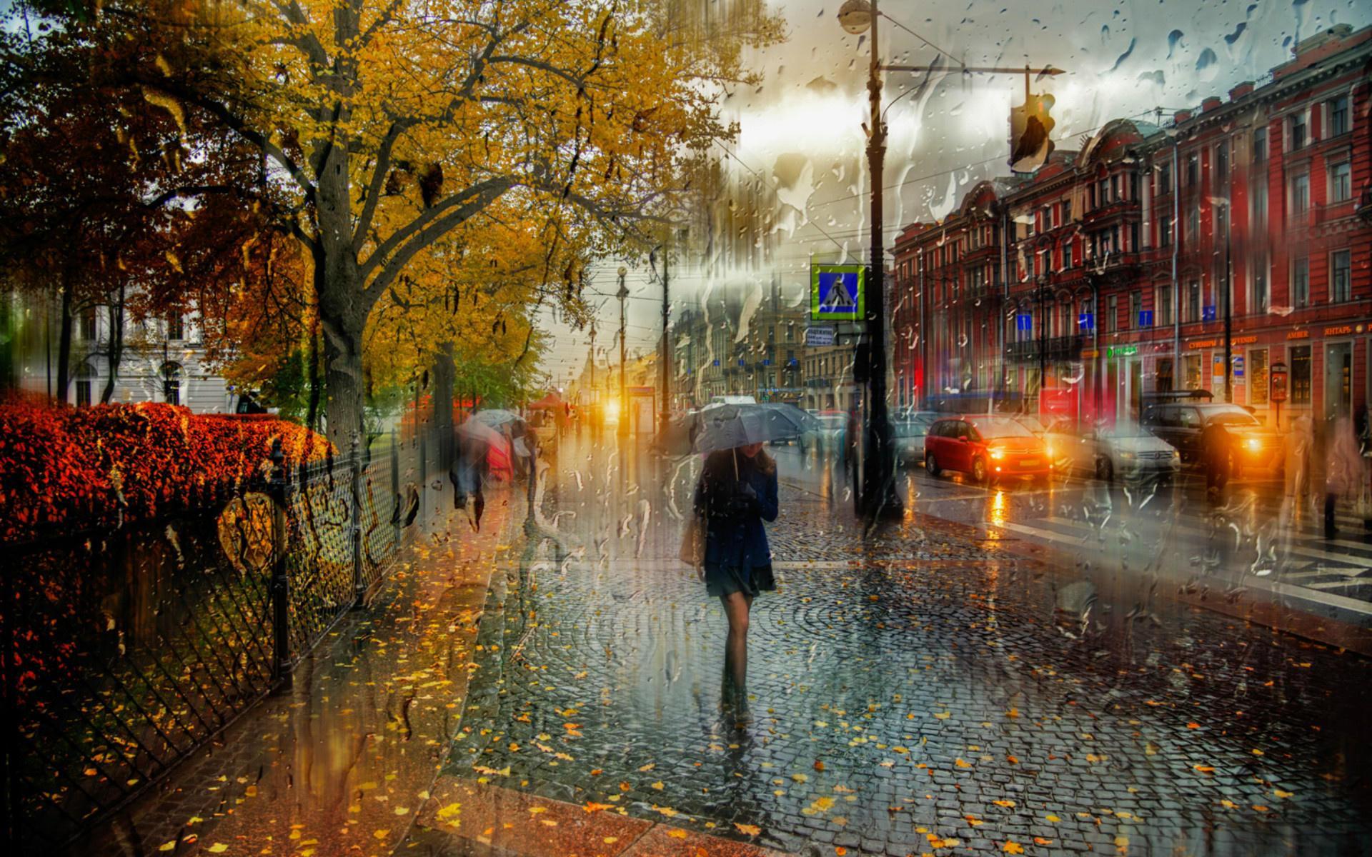 Картинки городская осень