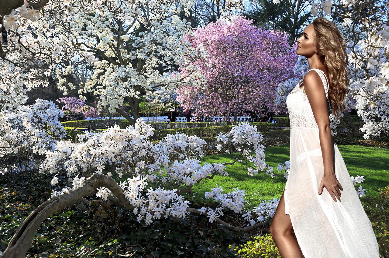 В цветенье белом