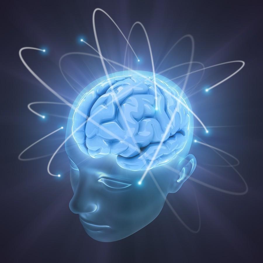 Мозг. Инструкция по применению 77