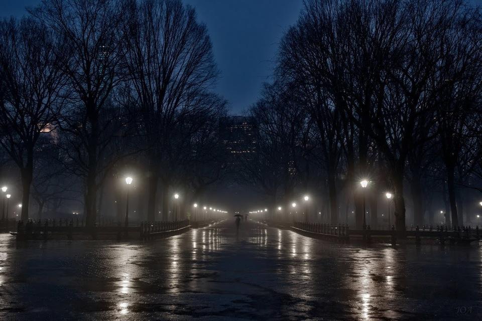 Целует дождь...