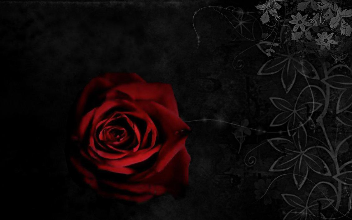 Обои на рабочий стол красные розы на черном фоне
