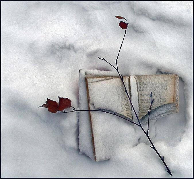 Белый снег, чистый лист без картинок…