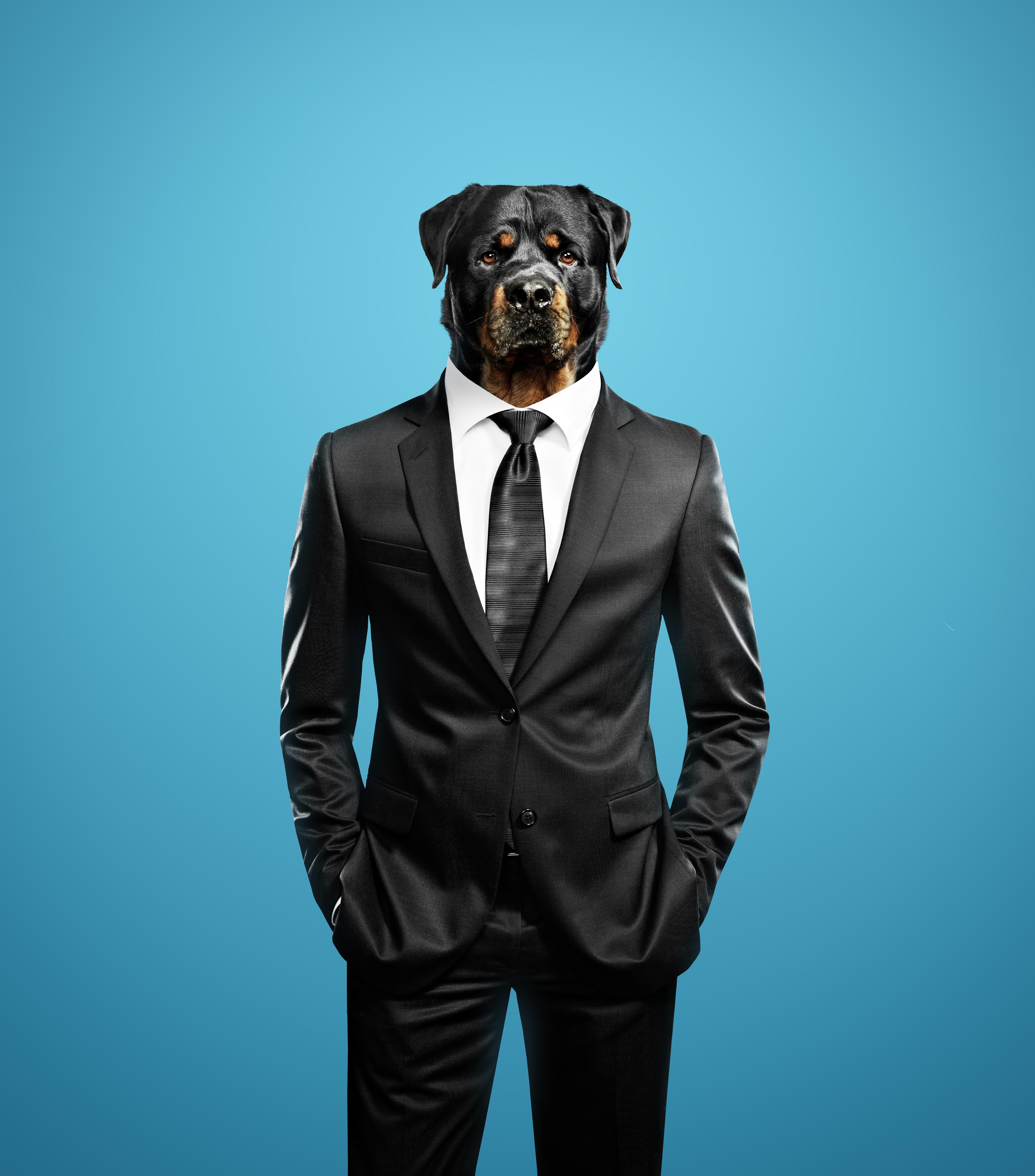 Человек с головой собаки картинки