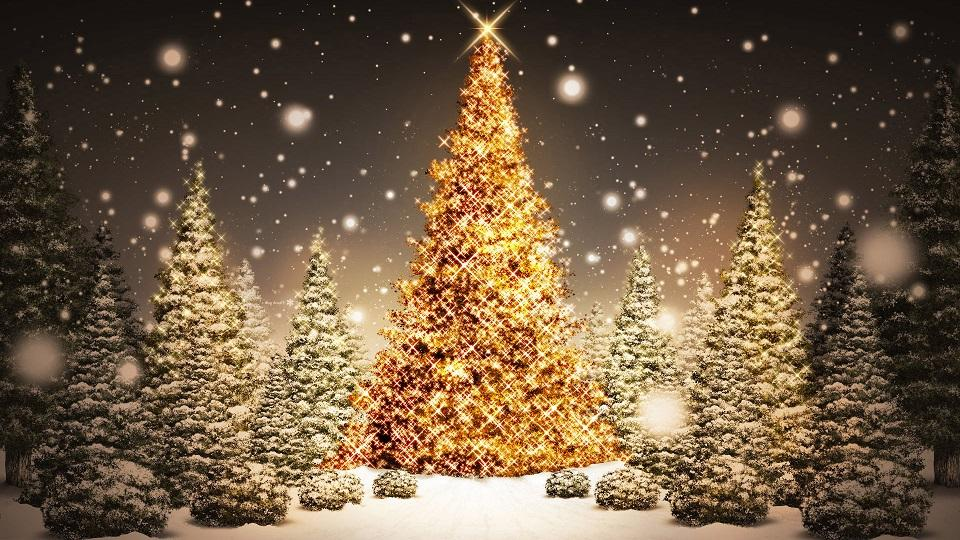 Три новогодние ели  № 1417084 бесплатно