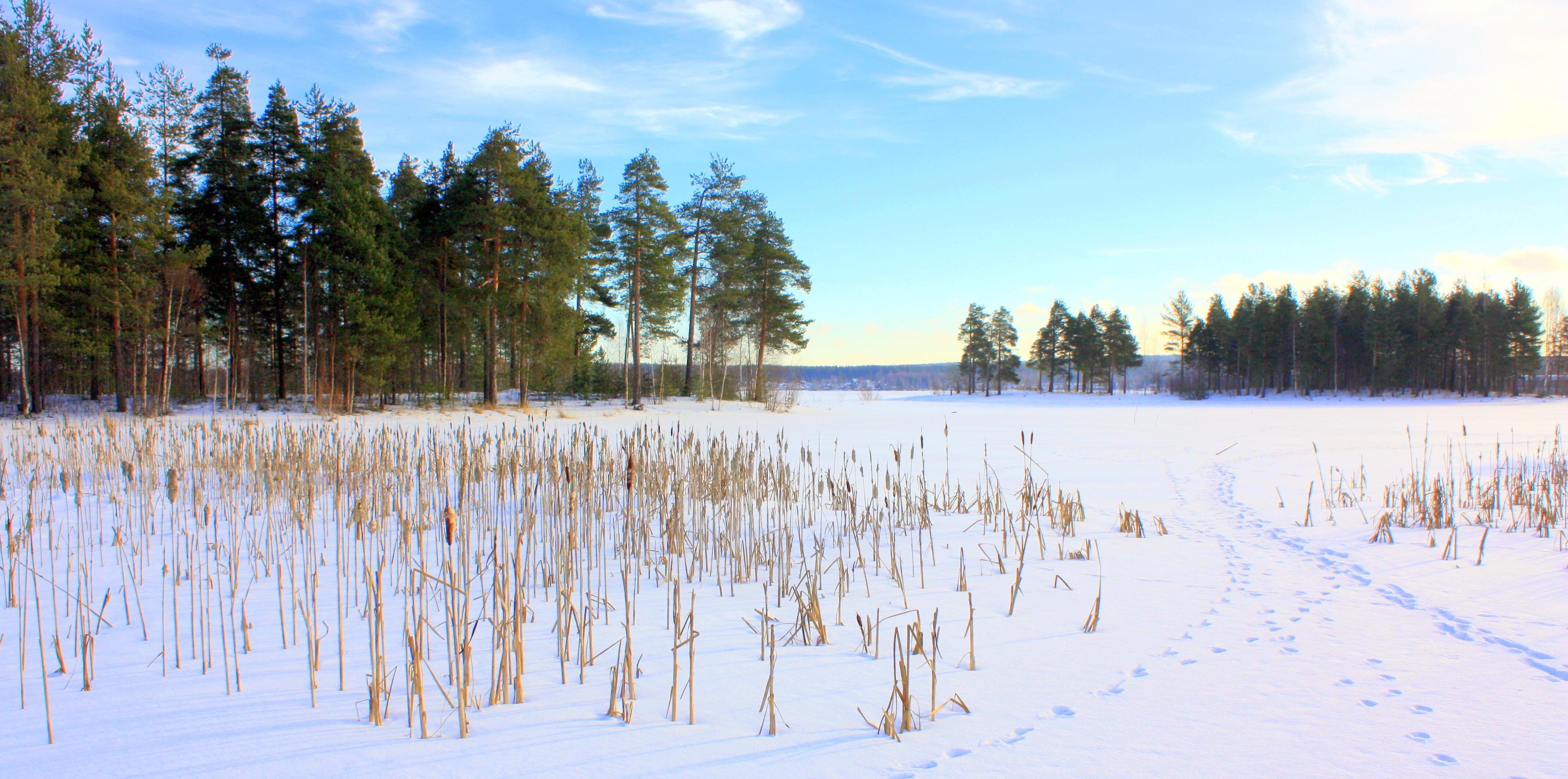 Предчувствуя вскоре дыхание зимы