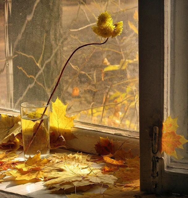 Золотая осень, золотая