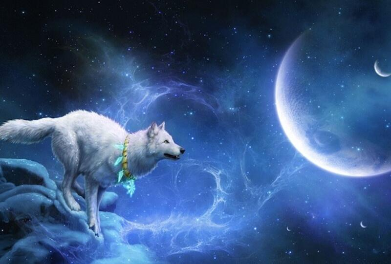 Третий уровень. Мир духов животных /Странные сказки/